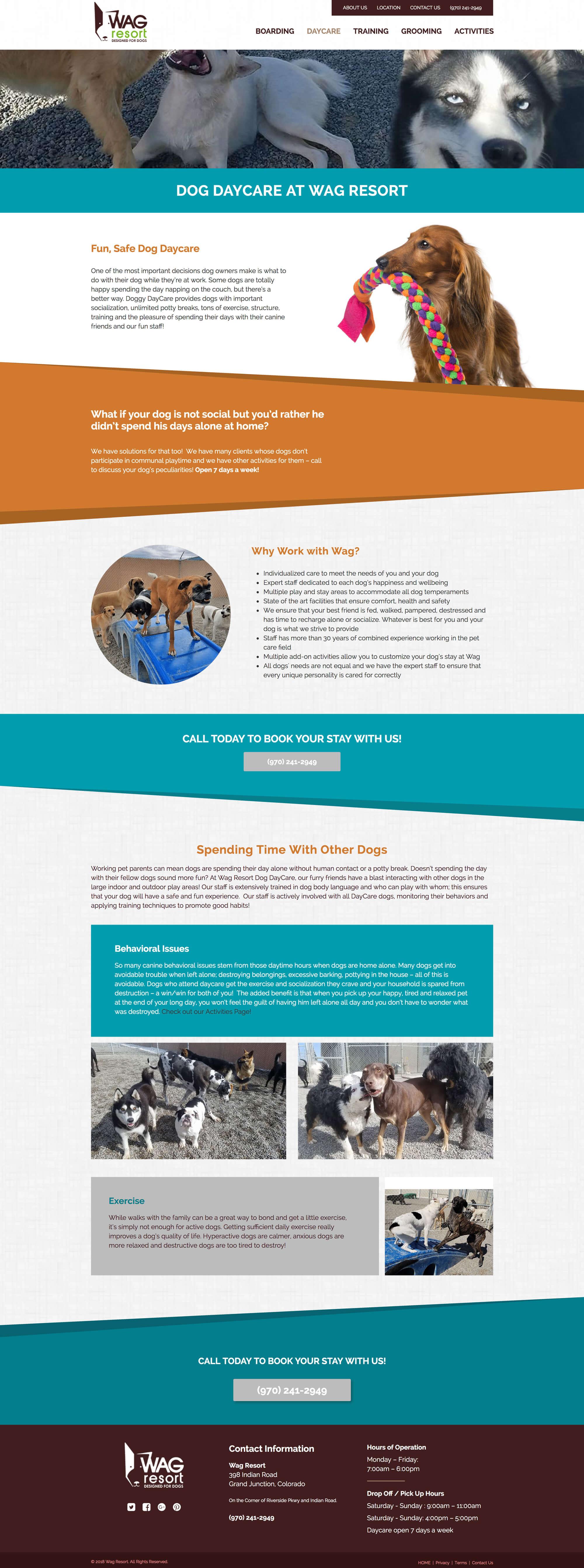Wag Resort - A-Train Marketing | Fort Collins Colorado